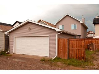 Photo 22: 270 CRANBERRY Close SE in Calgary: Cranston House for sale : MLS®# C4022802