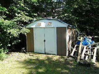 Photo 13: 30 Hargrave Road in Kawartha Lakes: Rural Eldon House (Bungalow) for sale : MLS®# X3124786