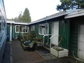 Photo 10: 22041 Dewdney Trunk Road in Maple Ridge: Duplex for sale