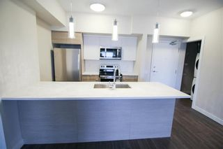 Photo 2: 310 70 Philip Lee Drive in Winnipeg: Crocus Meadows Condominium for sale (3K)  : MLS®# 202115676