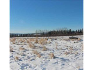 Photo 7: 34165 Township Road 240A in Rural Rocky View County: Rural Rocky View MD Detached for sale : MLS®# A1070549