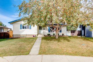 Photo 1: 114 Pinetree Bay NE in Calgary: Pineridge Detached for sale : MLS®# A1151101