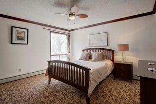 Photo 17: 203 917 18 Avenue SW in Calgary: Lower Mount Royal Apartment for sale : MLS®# A1099255