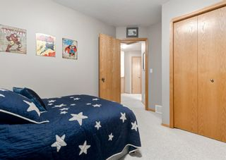 Photo 30: 103 DOHERTY Close: Red Deer Detached for sale : MLS®# A1147835