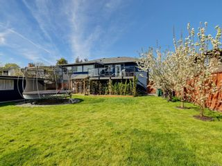 Photo 21: 1025 Nicholson St in : SE Lake Hill House for sale (Saanich East)  : MLS®# 872923