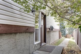Photo 27: 196 Edgedale Way NW in Calgary: Edgemont Detached for sale : MLS®# A1147191