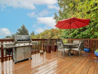 Photo 15:  in : SE Arbutus House for sale (Saanich East)  : MLS®# 887353