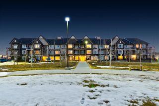 Photo 24: #1110 175 SILVERADO BV SW in Calgary: Silverado Condo for sale : MLS®# C4249538
