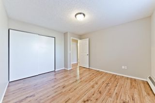 Photo 19: 103 11 Dover Point SE in Calgary: Dover Apartment for sale : MLS®# A1083330