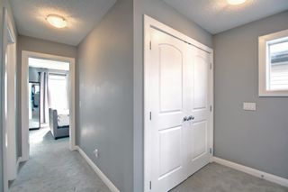 Photo 32: 180 Evanspark Gardens NW in Calgary: Evanston Detached for sale : MLS®# A1144783