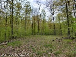 Photo 15: 1832 COUNTY RD. 40 Road in Quinte West: Vacant Land for sale : MLS®# 40154512