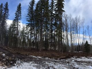 Main Photo: LOT 1 MARSH Road in Quesnel: Quesnel - Rural West Land for sale (Quesnel (Zone 28))  : MLS®# R2560822