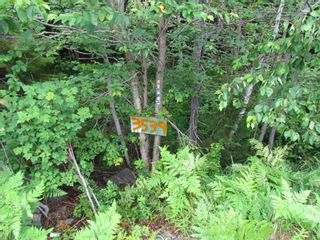 Photo 4: 22 3539 7 Highway in Lake Echo: 31-Lawrencetown, Lake Echo, Porters Lake Vacant Land for sale (Halifax-Dartmouth)  : MLS®# 202119499