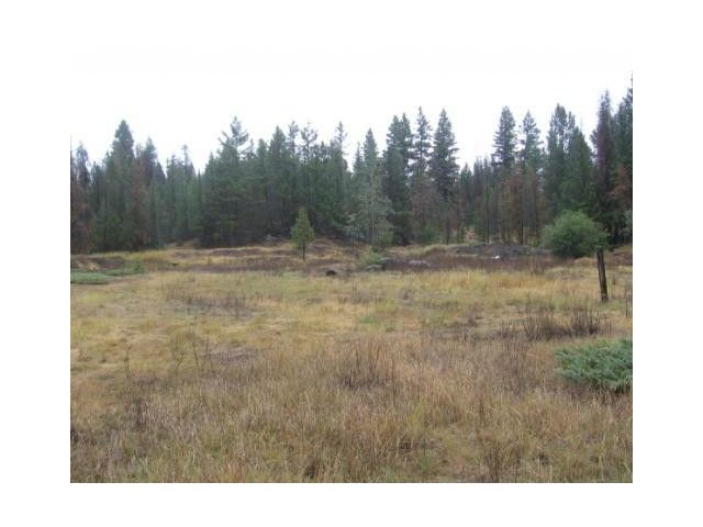 Photo 3: Photos: 1537 CHASM Road: 70 Mile House Land for sale (100 Mile House (Zone 10))  : MLS®# N232330