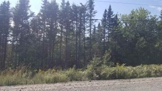 Photo 3: Lot 2 Moose River Road in Lindsay Lake: 35-Halifax County East Vacant Land for sale (Halifax-Dartmouth)  : MLS®# 201921608