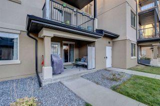 Photo 18: 101 10530 56 Avenue in Edmonton: Zone 15 Condo for sale : MLS®# E4234181