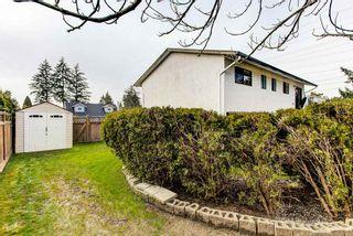 Photo 25: 11998 210TH Street in Maple Ridge: Southwest Maple Ridge House for sale : MLS®# R2553047