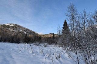 """Photo 23: 8 3000 DAHLIE Road in Smithers: Smithers - Rural Land for sale in """"Mountain Gateway Estates"""" (Smithers And Area (Zone 54))  : MLS®# R2280427"""