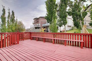 Photo 20: 11 SHERWOOD Grove NW in Calgary: Sherwood Detached for sale : MLS®# A1036541