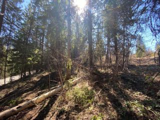 Photo 19: Lot L VIEW RIDGE ROAD in Nelson: Vacant Land for sale : MLS®# 2460797