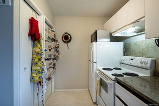 Photo 26: 4208 Morris Dr in : SE Lake Hill House for sale (Saanich East)  : MLS®# 871625
