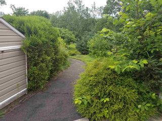 Photo 29: 5019 Highway 4 in Alma: 108-Rural Pictou County Residential for sale (Northern Region)  : MLS®# 202117741