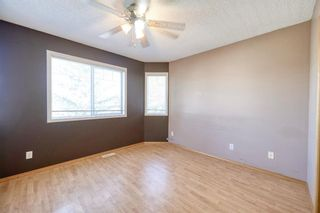 Photo 23: 172 ERIN MEADOW Way SE in Calgary: Erin Woods Detached for sale : MLS®# A1028932