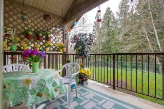 "Photo 18: 26 11737 236 Street in Maple Ridge: Cottonwood MR Townhouse for sale in ""MAPLEWOOD CREEK"" : MLS®# R2252662"