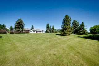 Photo 6: 54518 RGE RD 253: Rural Sturgeon County House for sale : MLS®# E4244875