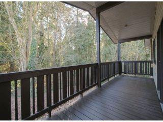 Photo 10: 10446 RIVER Road in Delta: Nordel Duplex for sale (N. Delta)  : MLS®# F1403425