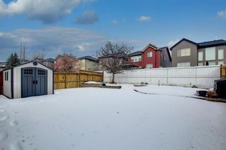 Photo 33: 54 Evanspark Terrace NW in Calgary: Evanston Residential for sale : MLS®# A1060196