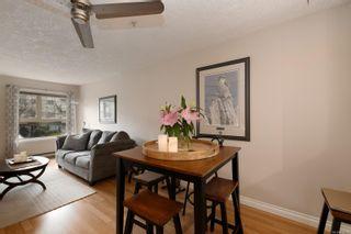 Photo 6: 201 1715 Richmond Ave in : Vi Jubilee Condo for sale (Victoria)  : MLS®# 876798