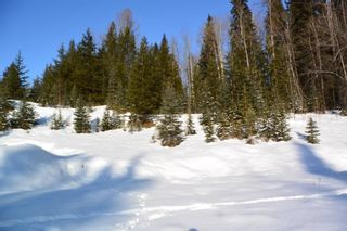 Photo 14: LOT A W 16 Highway in Smithers: Smithers - Town Land for sale (Smithers And Area (Zone 54))  : MLS®# R2533470