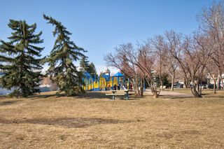 Photo 39: 14 Radcliffe Crescent SE in Calgary: Albert Park/Radisson Heights Detached for sale : MLS®# A1085056