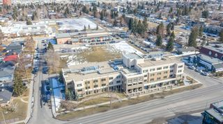Photo 45: 704 Imperial Way SW in Calgary: Britannia Detached for sale : MLS®# A1081312