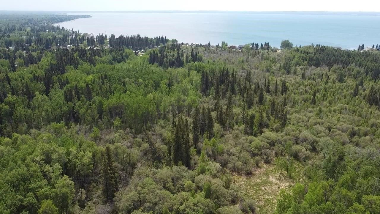 Main Photo: Rge Rd 10 Mulhurst Bay: Rural Wetaskiwin County Rural Land/Vacant Lot for sale : MLS®# E4223549