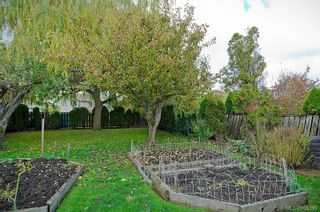 Photo 16: 1520 Clawthorpe Ave in : Vi Oaklands House for sale (Victoria)  : MLS®# 608399