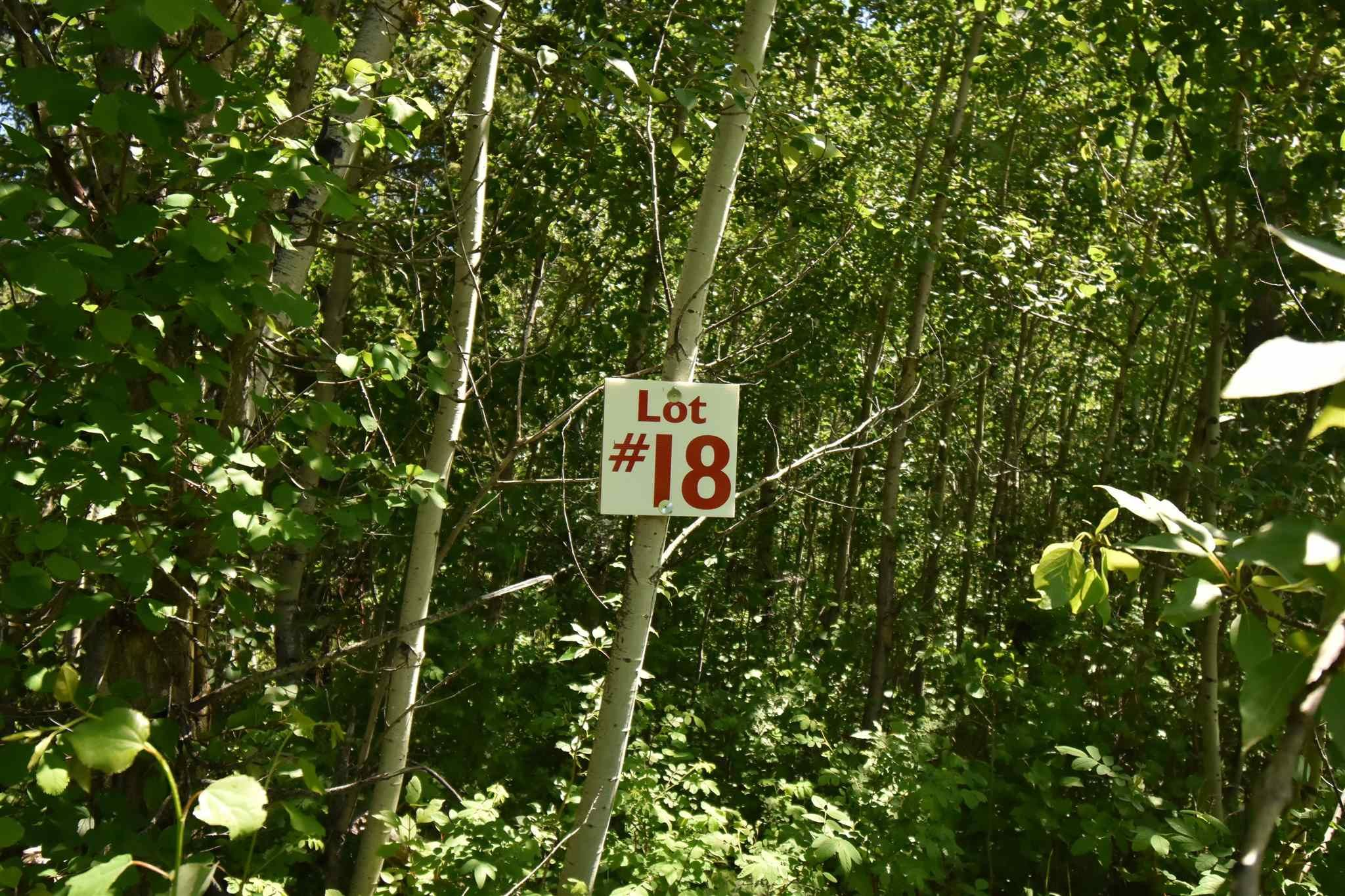 Main Photo: 18 Village West: Rural Wetaskiwin County Rural Land/Vacant Lot for sale : MLS®# E4251065