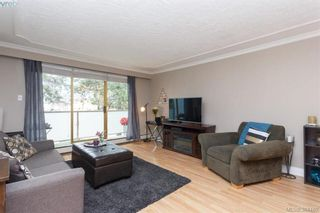 Photo 4: 221 1025 Inverness Rd in VICTORIA: SE Quadra Condo for sale (Saanich East)  : MLS®# 772775