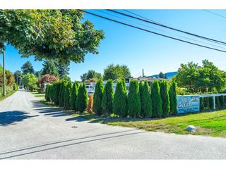 """Photo 35: 7 9010 SHOOK Road in Mission: Hatzic Manufactured Home for sale in """"LITTLE BEACH"""" : MLS®# R2614436"""