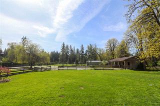 Photo 4: 13115 EDGE STREET in Maple Ridge: Northwest Maple Ridge House for sale : MLS®# R2242796