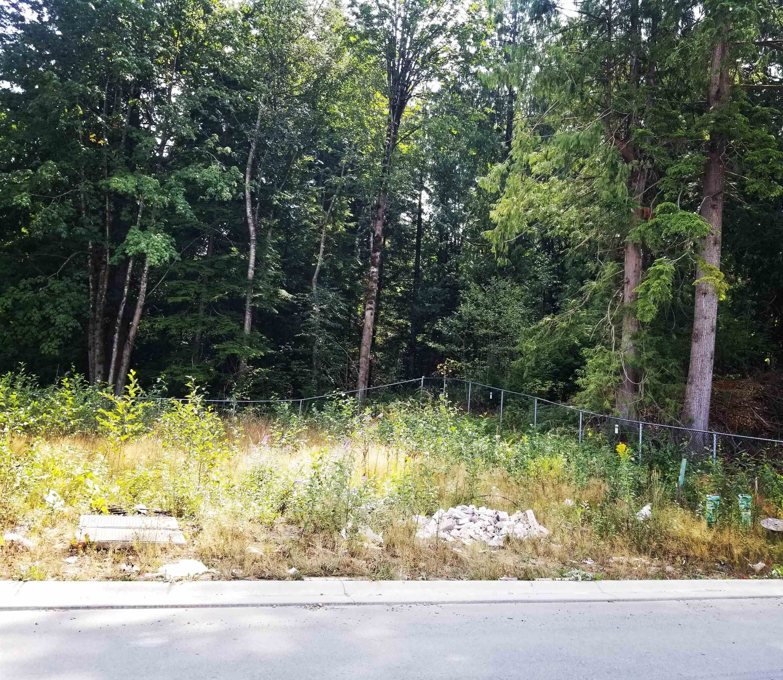 "Main Photo: 36710 DIANNE BROOK Avenue in Abbotsford: Abbotsford East Land for sale in ""Dianne Brook Development"" : MLS®# R2608061"
