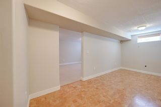 Photo 23: 11523 51 Avenue in Edmonton: Zone 15 House for sale : MLS®# E4266418