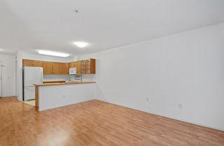 Photo 12: 215 78 McKenney Avenue: St. Albert Condo for sale : MLS®# E4265004