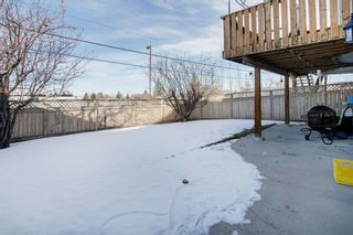 Photo 28: 66 Jensen Heights Place NE: Airdrie Detached for sale : MLS®# A1065376