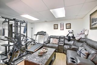 Photo 25: 31 COVENTRY Lane NE in Calgary: Coventry Hills Detached for sale : MLS®# A1116508