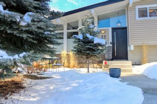 Photo 38: 23 Braden Crescent NW in Calgary: Brentwood Detached for sale : MLS®# A1073272