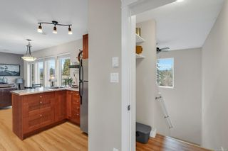 Photo 19: 4340 Discovery Dr in : CR Campbell River North House for sale (Campbell River)  : MLS®# 860798