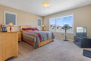 Photo 25: 101 COPPERSTONE Close SE in Calgary: Copperfield Detached for sale : MLS®# A1076956