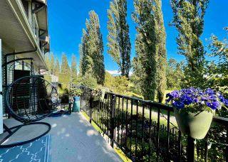 "Photo 16: 81 7780 170 Street in Surrey: Fleetwood Tynehead Townhouse for sale in ""VANTAGE"" : MLS®# R2592093"